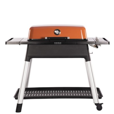 Barbecue a Gas FURNACE™