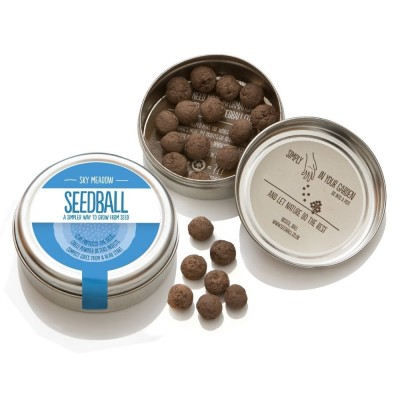 Sky Meadow - mix di semi di fiori di campo Prato Cielo,confezione in alluminio