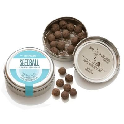Cloud Meadow - mix di semi di fiori di campo Prato Nuvola,confezione in alluminio
