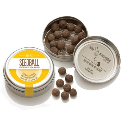 Bee Mix - mix di semi di fiori di campo Miscela Api,confezione in alluminio