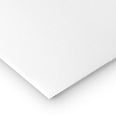 Polipropilene alveolare-polionda, colore Bianco, 100 x 50 cm