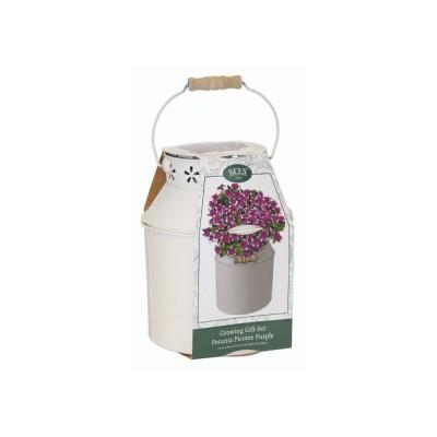 Kit Coltivazione Fiori di Petunia, con vaso in metallo, terriccio e semi