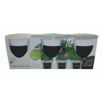 Kit Coltivazione di Basilico, Prezzemolo e Erba Cipollina, con vasi, terriccio e semi