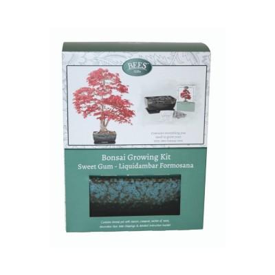 """Kit Coltivazione Bonsai """"Liquidambar"""", con vaso, terriccio, scaglie di ardesia e semi"""