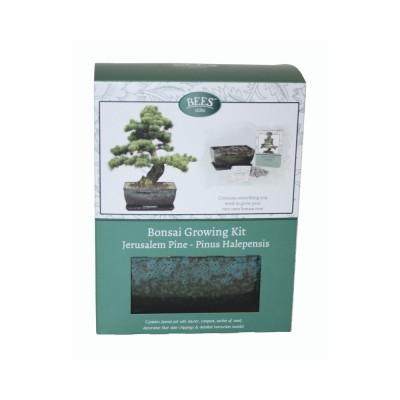 """Kit Coltivazione Bonsai """"Pino d'Aleppo"""", con vaso, terriccio, scaglie di ardesia e semi"""